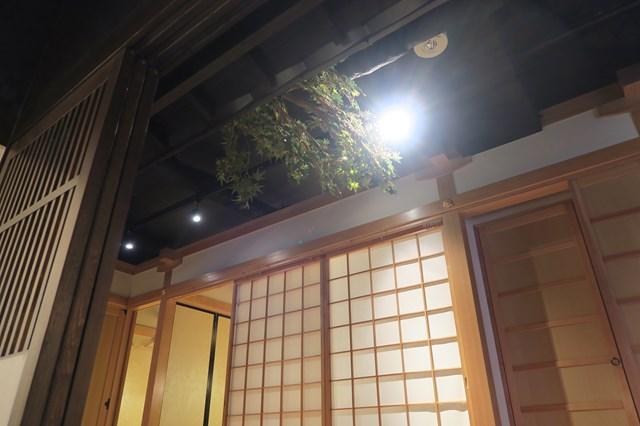 凛花 (2)