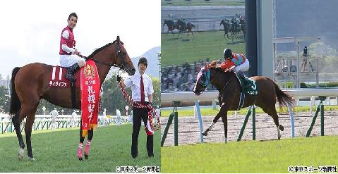 【競馬】札幌記念(G2)は四井騎手ディサイファ、北九州記念(G3)は武豊騎手ベルカント