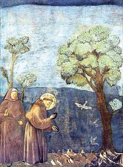 小鳥に説教する聖フランチェスコ2