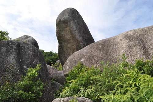 亀頭石見上げる