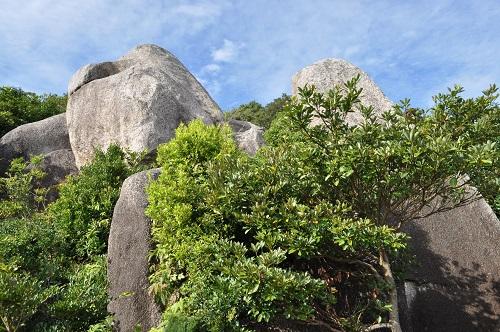 亀頭石から見上げる