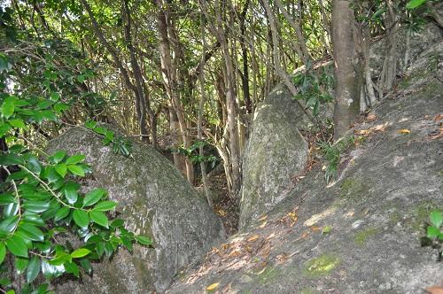 石が顔を出している道