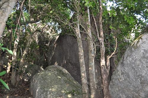 石たちの間を更に登っていく