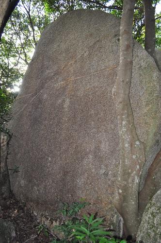 線入りの石