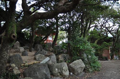石庭から金剛福寺本堂へ