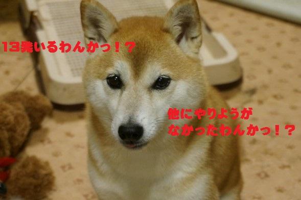 20150915-01.jpg