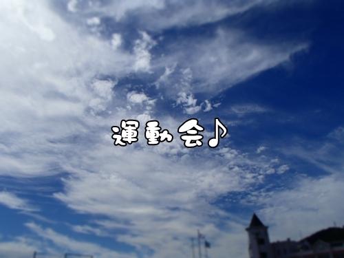 PA030132.jpg