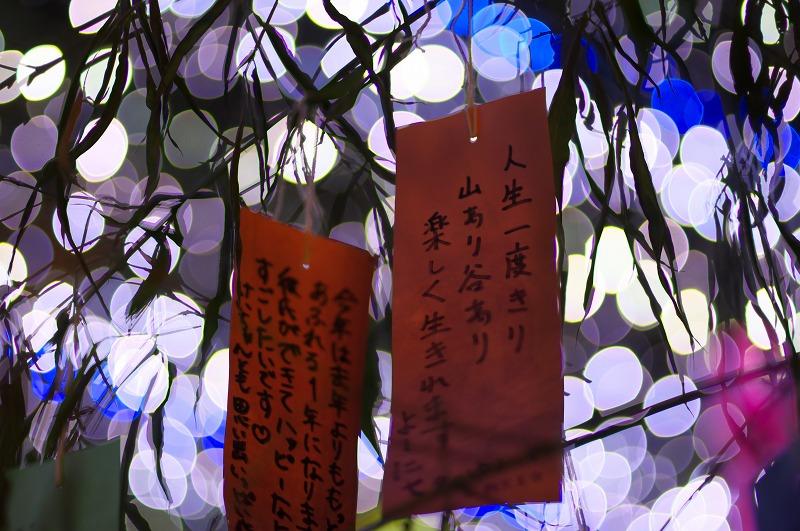 七夕のゆうべ in 四天王寺2015
