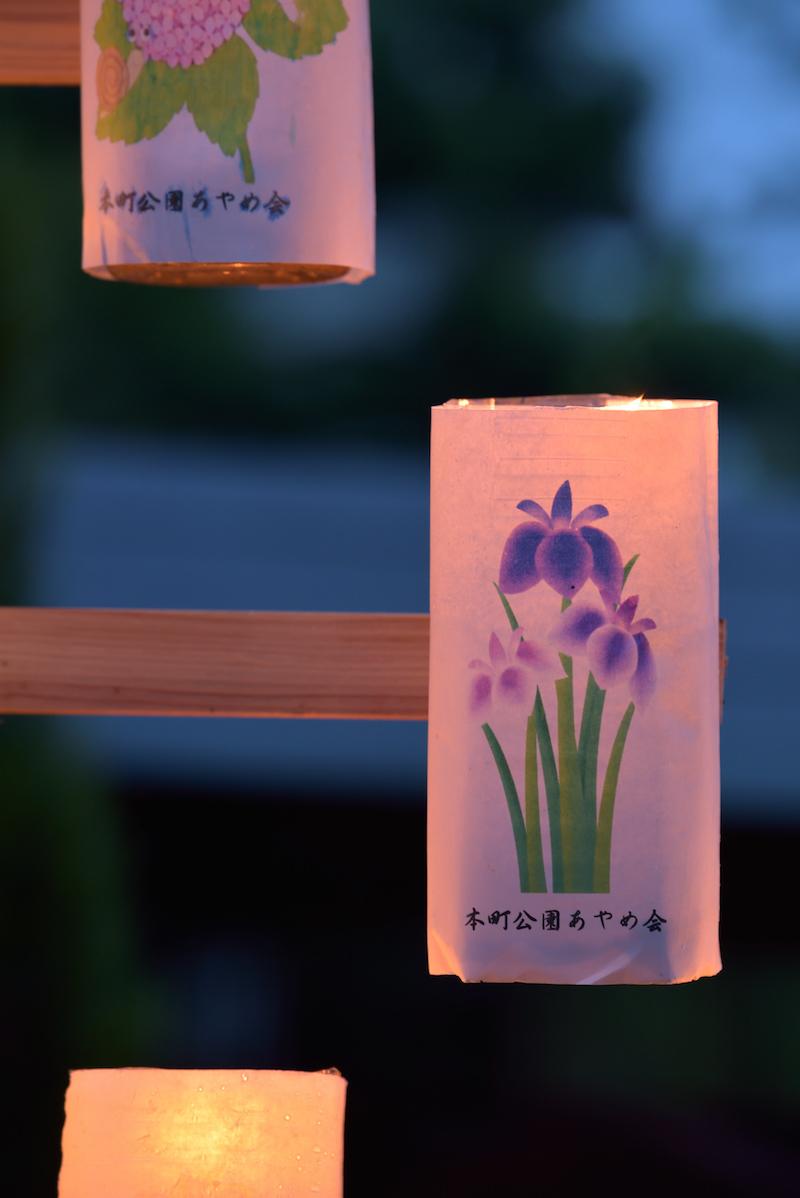 富田林 寺内町 灯