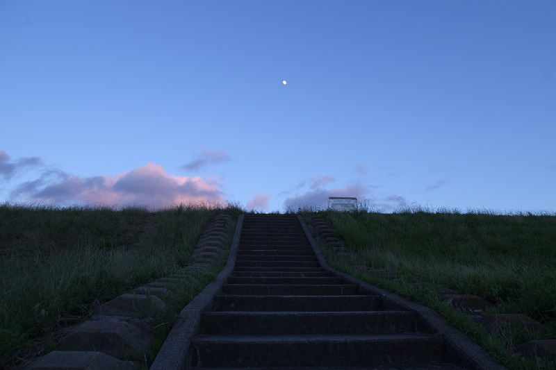 淀川河川公園 西中島地区の夜景