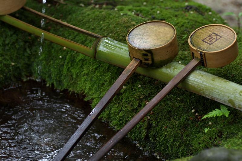 唐招提寺 苔 柄杓