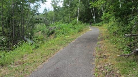 サイクリングロードの中、今回のルートの方が下りが多く楽な気がする(多分)。