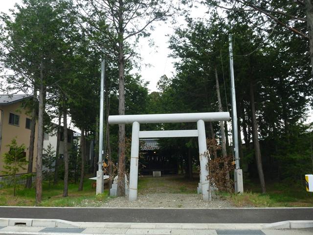 s-kusama (3)