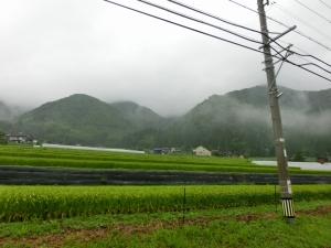 20150822_04里山