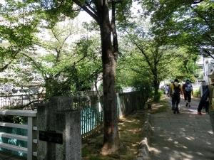 20150905_08今川緑道