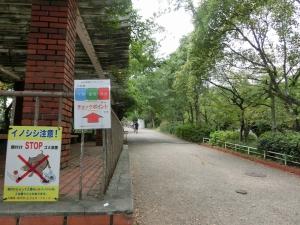 20151004_23王子公園