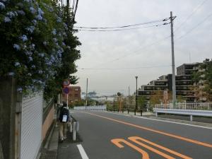 20151010_12磯子