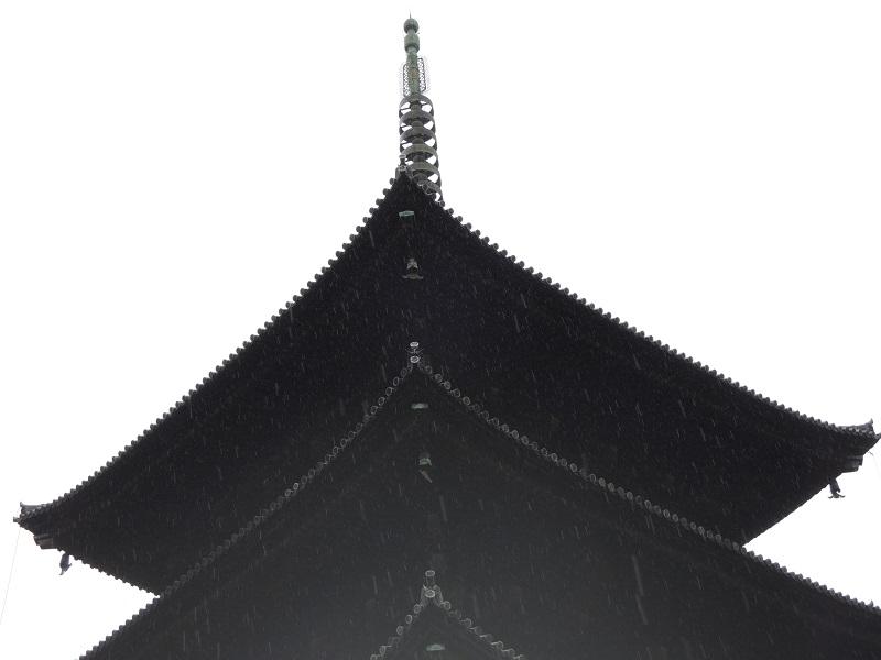 雨の五重塔