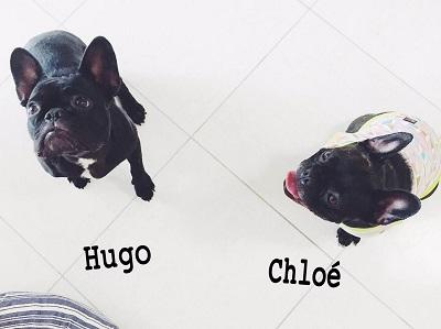 HUGO&クロエちゃん
