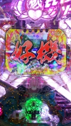 DSC_0031_20151015113756b17.jpg