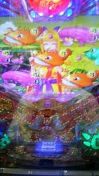 DSC_0042_2015100119371309d.jpg