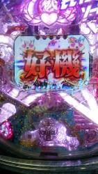 DSC_0043_20151001190625cca.jpg