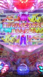 DSC_0088_20151001193821d13.jpg