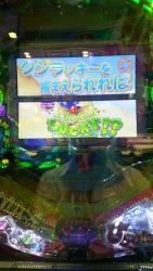 DSC_0103_201510141123009a9.jpg