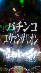 DSC_0133_20151002200820939.jpg