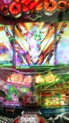 DSC_0320_201510211806131a6.jpg