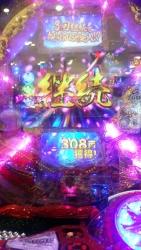 DSC_0365_20150824100806b76.jpg