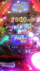 DSC_0376_20150824100823c3a.jpg