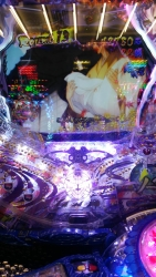 DSC_0505_20150929203503617.jpg
