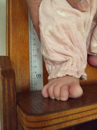 いちご4か月目身長測定5