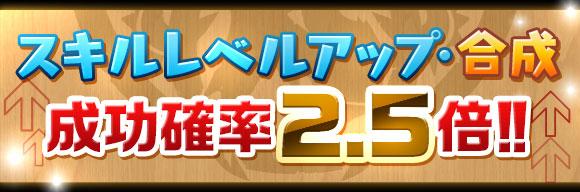 skill_seikou2_5x_20151015152716949.jpg