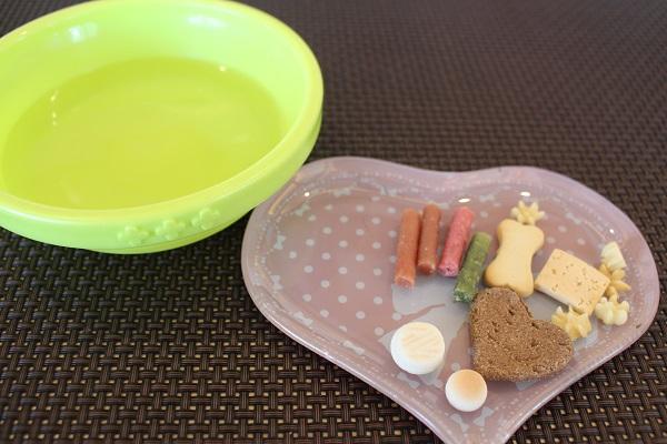 2015.09.09 第4回 京都マルチーズオフ会①(ブルスケッタ)-5