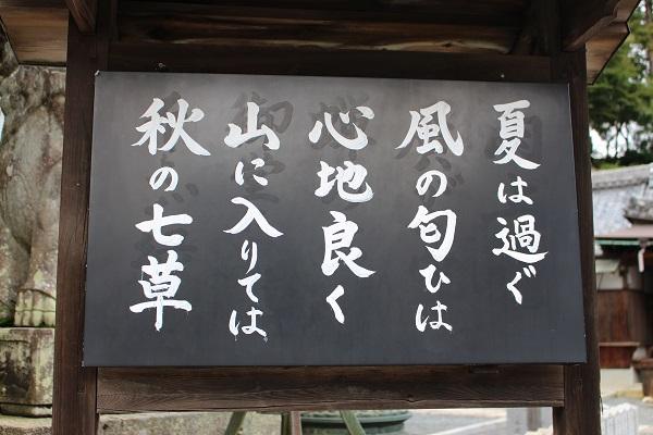2015.09.27 柳谷観音-3