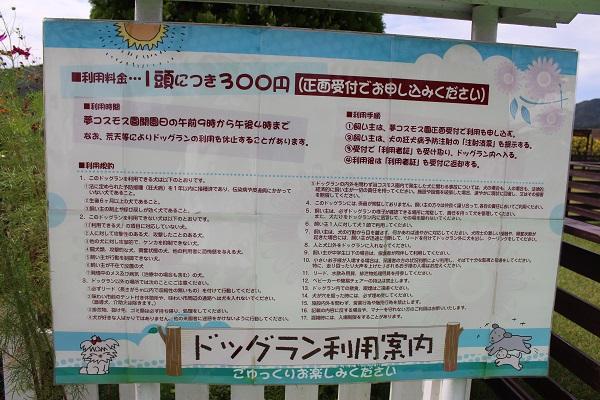 2015.10.09 亀岡夢コスモス園①-12