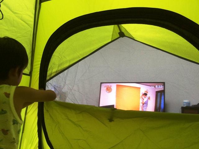 新しく購入したテント