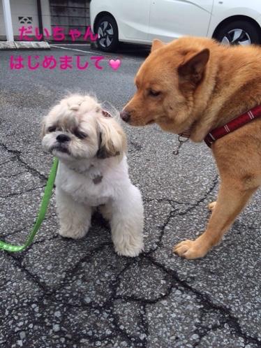 fc2blog_20150830163440f59.jpg
