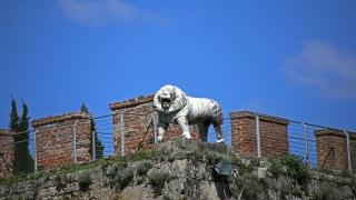 Spain Italy 0375