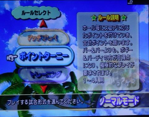 s-T&E ゴルフパラダイス プレイ (4)