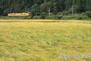 115系(黄色)