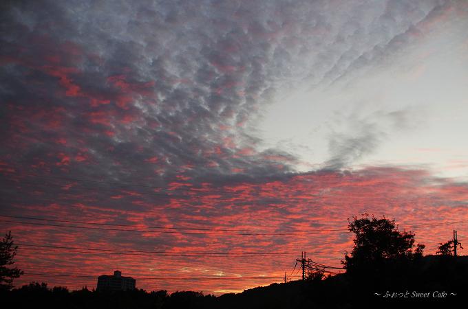 染まりゆく雲