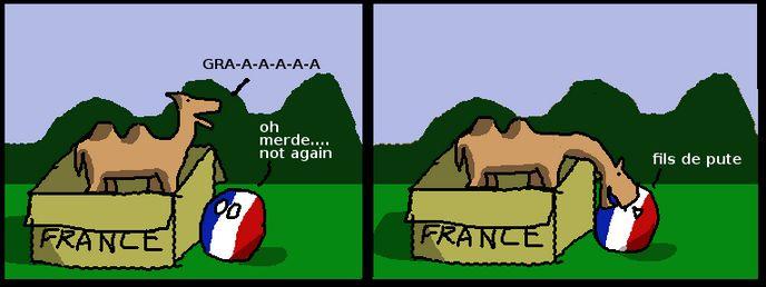 フランスのラクダ (7)