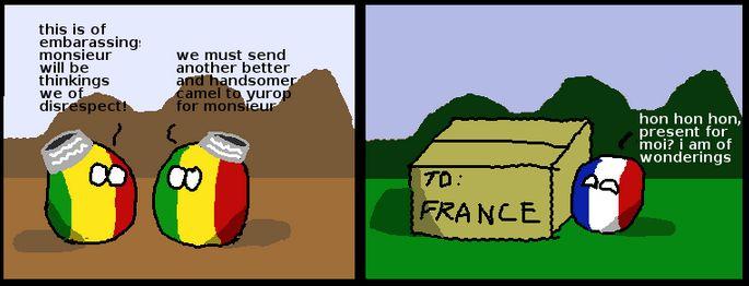 フランスのラクダ (6)