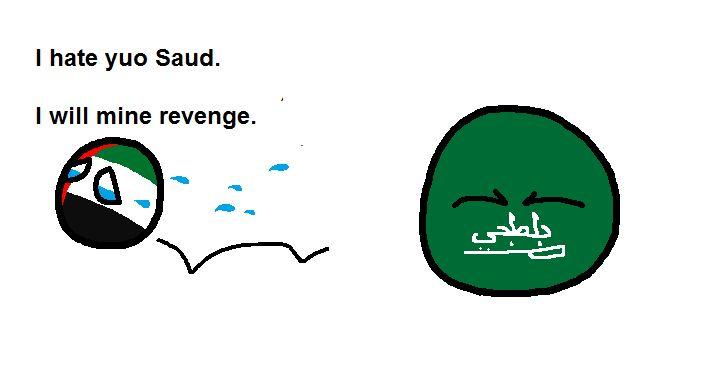 ベストムスリム国は誰? (6)