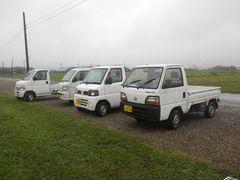 [写真]農園前の駐車場に並んだ軽トラ4台