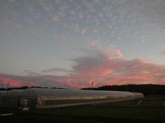 [写真]ベアハウスの西空に広がる夕焼雲の様子