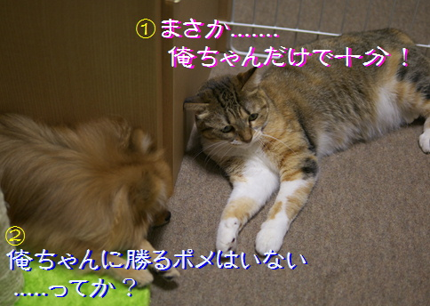 blog20150908-2b.jpg
